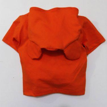 roupa-infantil-camisetas-divertidas-tigre
